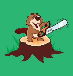 beaver holding a chainsaw standing on a stump on a vector image
