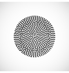 abstract bio shape vector image
