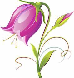 bell flower vector image