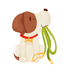 Cute puppy holding a leash on vector