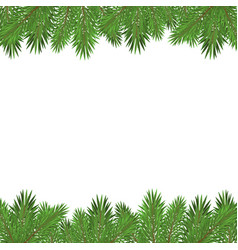 green christmas tree branches isolated on white vector image