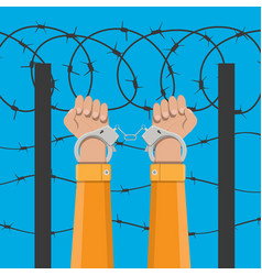 handcuffs on hands and barbed wire vector image