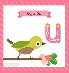 Letter u lowercase tracing uguisu bird perching vector