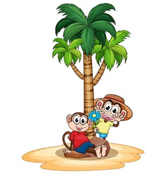 Monkeys and tree vector image