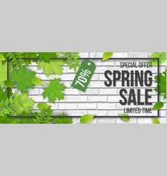 sale frame spring leaves white brick vector image