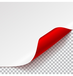 Sheet of paper with curved corner vector image