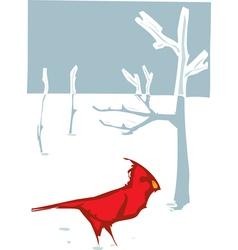 Cardinal Christmas vector image