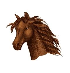Arabian brown horse race sport emblem vector image vector image