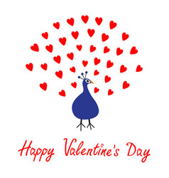 happy valentines day greeting card peacock open vector image vector image