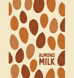 almond nut background seeds of the tree vector image