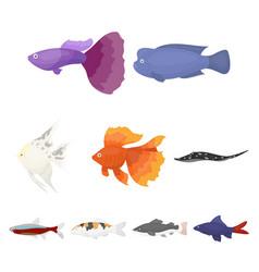 aquarium fish set icons in cartoon style big vector image