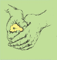 Bird in a hand vector