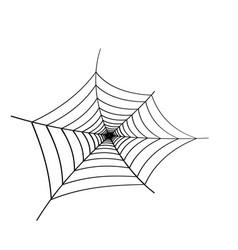 black spider web on white background vector image