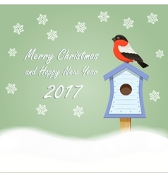 Christmas card Bullfinch snowflakes and New Year vector image