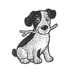Cute puppy pet sketch vector