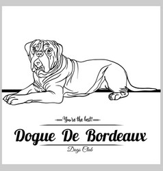Dogue de bordeaux - for t vector