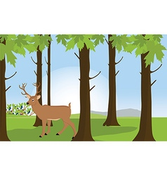 Forest landscape with deer vector image