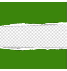 Green torn paper vector