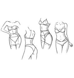 set linerie sets females wearing underwear vector image