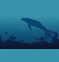 big whale on ocean landscape silhouette vector image