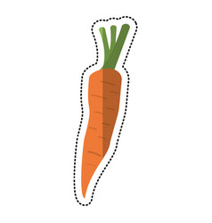 Cartoon carrot vegetable nutrition icon vector