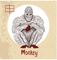 Chinese zodiac symbol of etching monkey vector