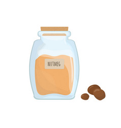 ground nutmeg stored in clear jar isolated on vector image