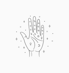 palmistry witch and magic symbol vector image