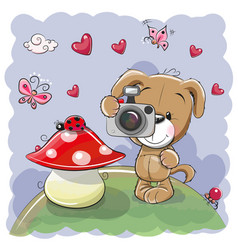 Cute cartoon dog with a camera vector