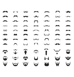 beards and mustache vector image