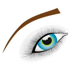 beautiful female blue happy eye vector image