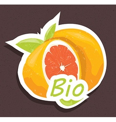 Bio orange tag vector image