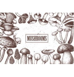 edible mushrooms design hand drawn healthy food vector image