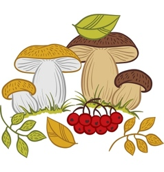 Mushrooms leaves and berries autumn vector