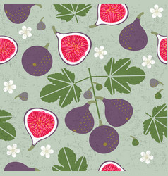 red figs seamless pattern leaves flowers vector image