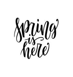 spring is here - hand drawn inspiration quote vector image