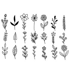 0147 hand drawn flowers doodle vector