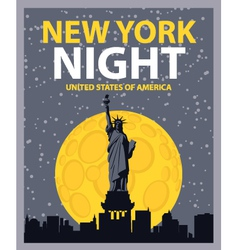 New york night vector image