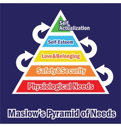 pyramid of needs vector image