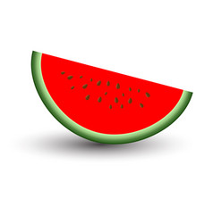 Sliced ripe red watermelon and sweet tasty vector