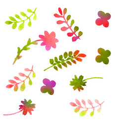 watercolor floral set isolated on white vector image