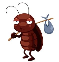 cockroach vector image vector image