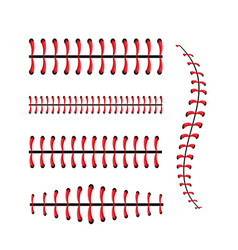 Baseball professional sport and game competition vector