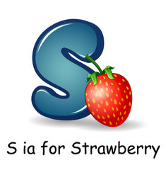 Fruit alphabet s is for st vector