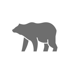 Grizzly bear grey icon isolated on white vector