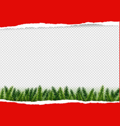 red torn paper with firtree vector image