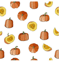 seamless pattern with colourful pumpkins autumn vector image
