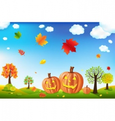 cartoon pumpkins vector image