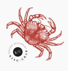 Crab hand drawn seafood engraved style vector