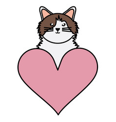 Cute little cat with heart love character vector